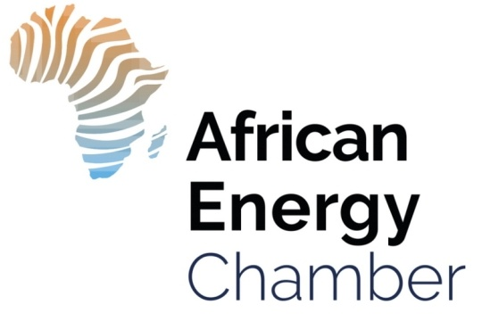 20190801_Germany Africa Business Forum.jpg